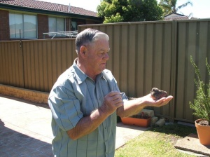 Dad with a little dove that fell out of its nest.